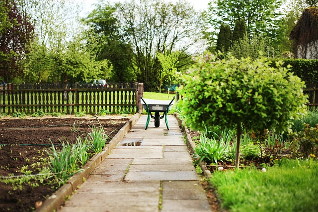 Pachtvertrag für einen Kleingarten – Das sollte man beachten