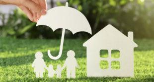 Kleingartenversicherung: So sichert man sich richtig ab