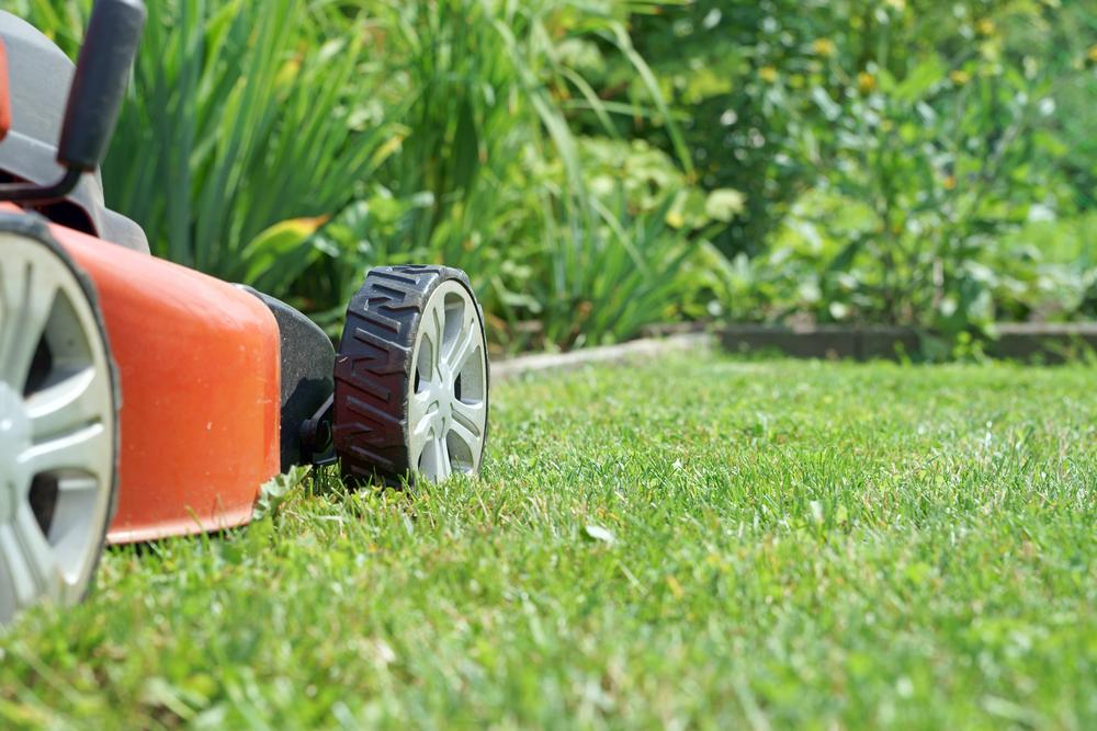 Rasenpflege im Frühling: So beseitigt man die Spuren des Winters
