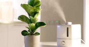 Luftreiniger und Luftbefeuchter gegen Pollen: So funktioniert es