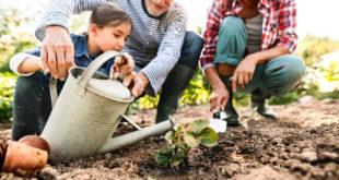 Natur pur: Mit dem Kinderkoffer zu Oma & Opa in den Garten