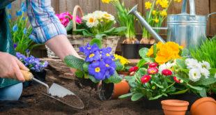 Putzen & Gartenarbeit: So wichtig ist die Pflege für Hände und Nägel