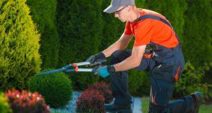 Gartenarbeit: Warum man seine Luxusuhr lieber Zuhause lassen sollte