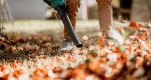 Laubsauger: Der praktische Helfer für den Garten