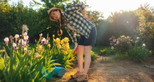 Schmerzfreie Gartenarbeit: Hilfsmittel und Tipps für Gartenbesitzer