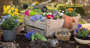 Gartenpflege im Herbst: Möbel, Pflanzen und Co.