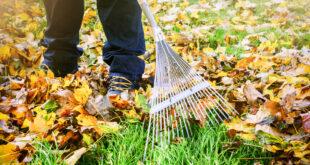 Winterfester Garten: Checkliste für Hobbygärtner